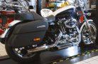 Verstellbare Auspuff Sportster 883 schwarz; Bj. ab 2014